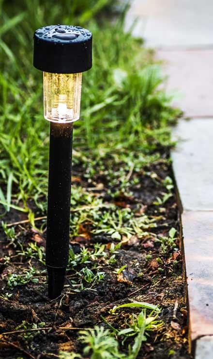 Evergreen Landscape Management LLC Commercial Landscape Lighting