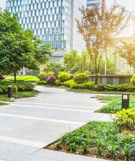 Evergreen Landscape Management LLC Commercial Landscaping