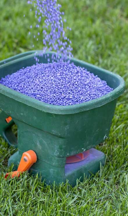 Evergreen Landscape Management LLC Commercial Lawn Fertilization