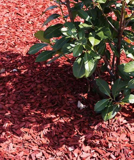 Evergreen Landscape Management LLC Commercial Mulching
