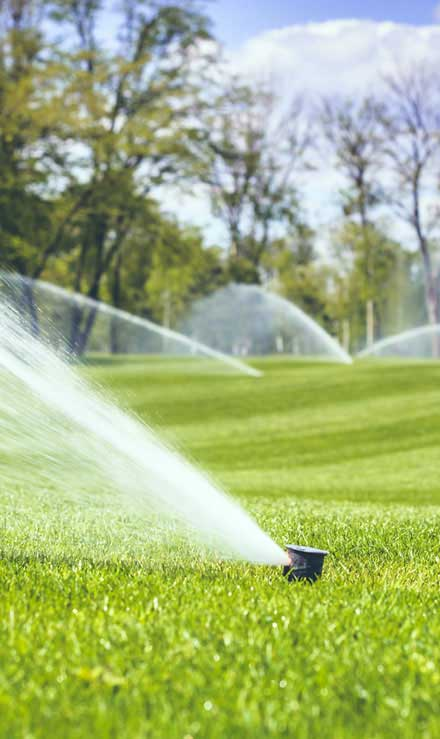 Evergreen Landscape Management LLC Commercial Sprinkler Installation
