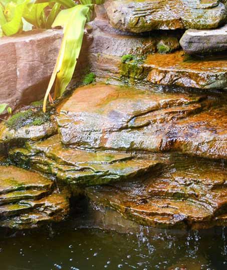 Evergreen Landscape Management LLC Commercial Water Features